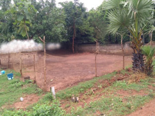403 Sq Yards Plot For Sale at Tammayapeta, Bendapudi