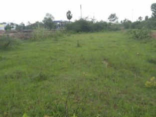 Commercial Plots for Sale at kolamuru Korukonda