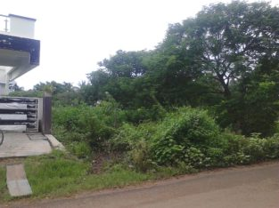 Open Land For Sale at Palakollu