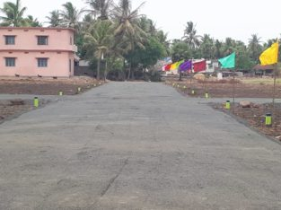 Plots For Sale at Polamuru Village, Penumantra