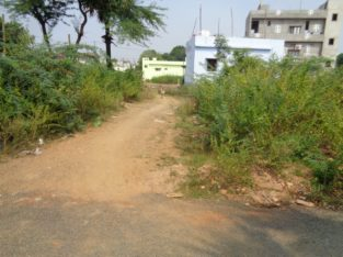 Residential Site for sale at Lalacheruvu, Rajhamundry