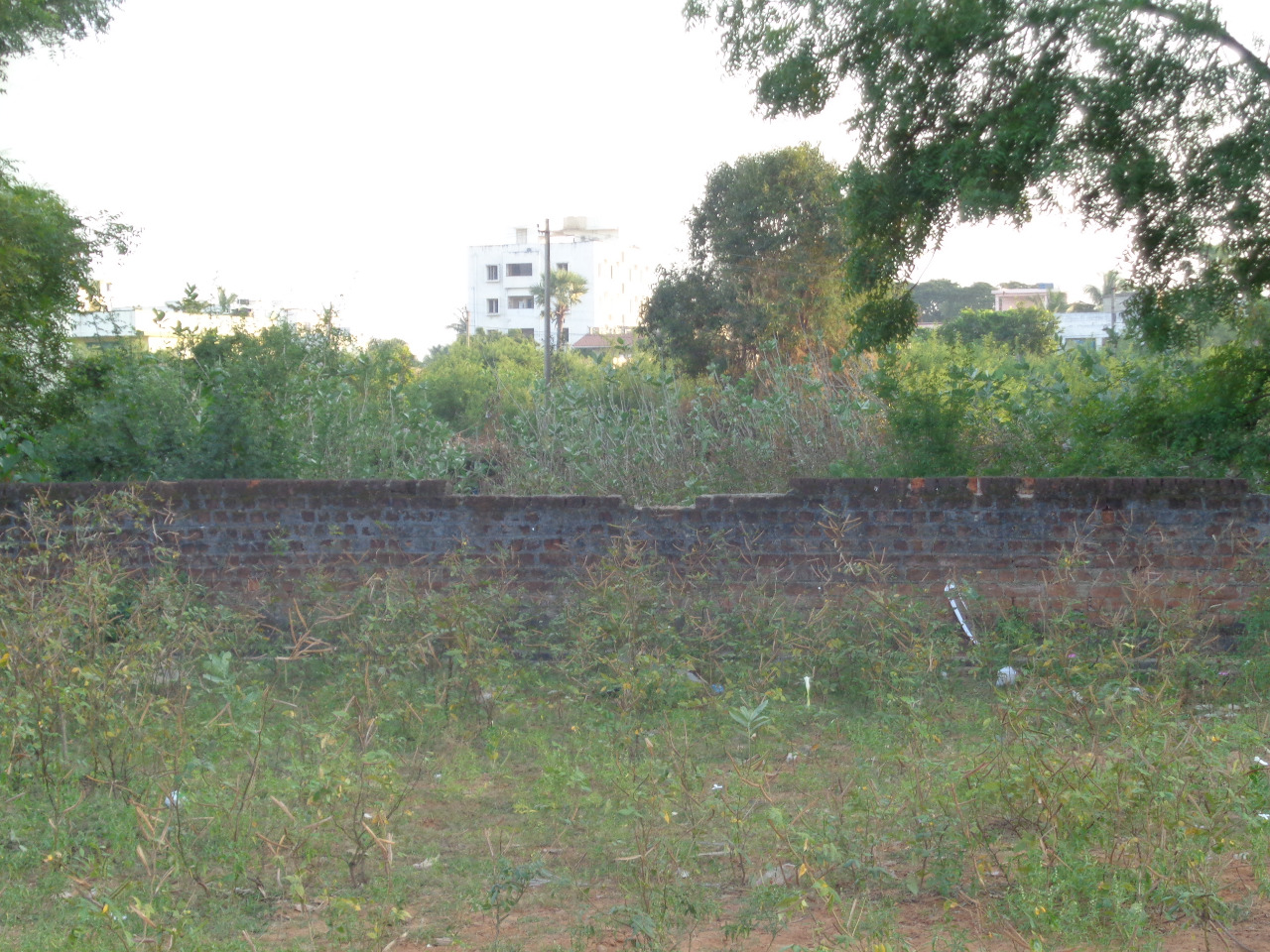 Residential Site for Sale at Ramanayyapeta, Kakinada