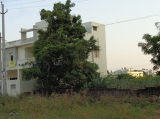 DTCP Residential Plots for Sale at Namavaram, Rajamundry