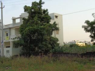 DTCP Residential Plots for Sale at Namavaram, Rajamundry