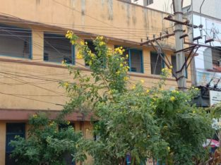 G+1 Commercial/Residential House for Sale at Orugantivari Street, Rajamundry