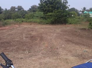 Open Land For Sale at Bhavanipuram, Konthamuru, Rajahmundry