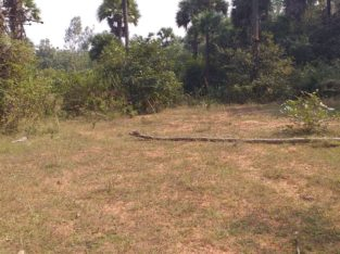 Plot for Sale at Diwancheruvu New Highway, Opp Autonagar, Rajahmundry