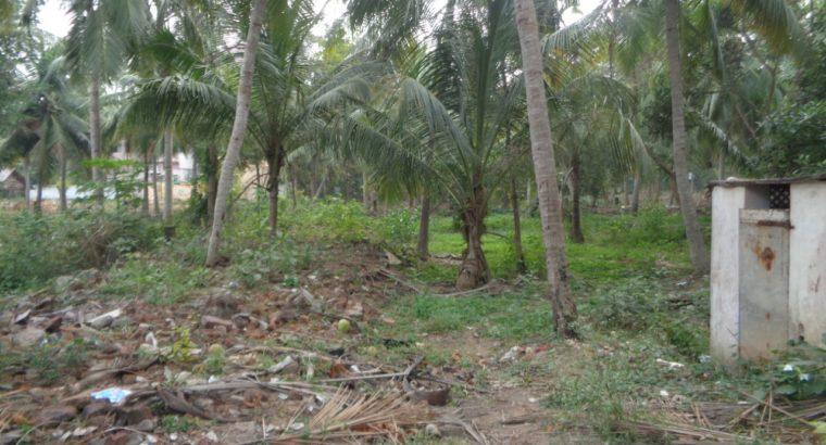 Commercial Site For Lease at Bhatnavilli, Amalapuram