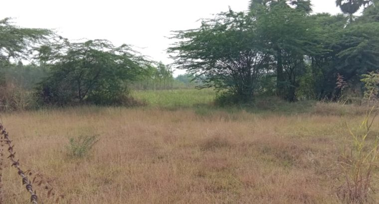 Commercial Open Land for Lease Or Rent at Chepuru, Tuni