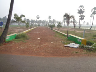 DTCP Plots for Sale at Ramachandrapuram Road, Velangi.