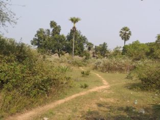 Site for Sale at Diwancheruvu, Rajahmundry