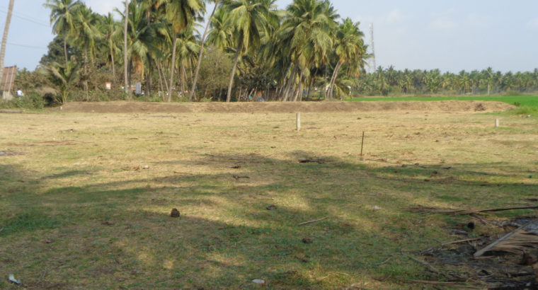 Commercial Site for Sale at Lankala Koderu, Palakollu