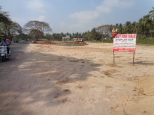 DTCP Plots for Sale at Tadepalligudem Road, Tallapalem Village, Nidadavolu