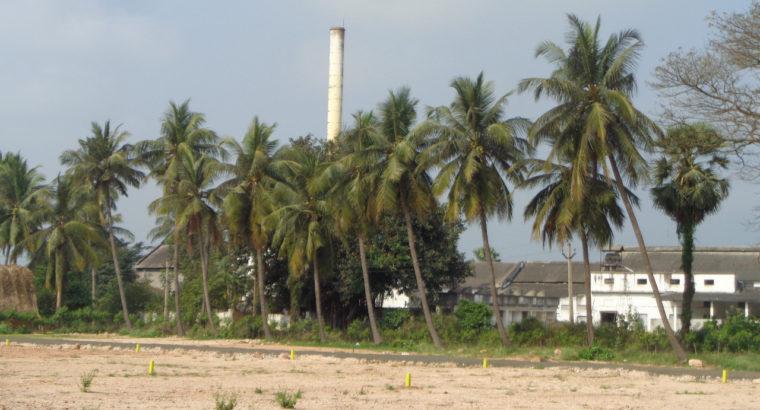 DTCP Plots for Sale at Tadepalligudem Road, Tallapalem Village, Nidadavolu