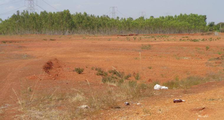 Land For Sale at P.Nayakampalli, Gandepalli Mandalam.