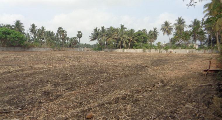 Site for Lease at Undi Road, Bhimavaram