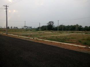DTCP Plots for Sale at G.K. Nagar, Near NH 216, Gollaprolu