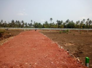 Commercial Site For Lease / Rent at Konkapalli, Amalapuram