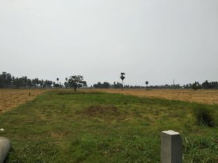 450 & 550 YARDS RESIDENTIAL PLOTS FRO SALE AT RAMACHANDRAPURAM MUCHIMILLI AREA EASTGODAVARI