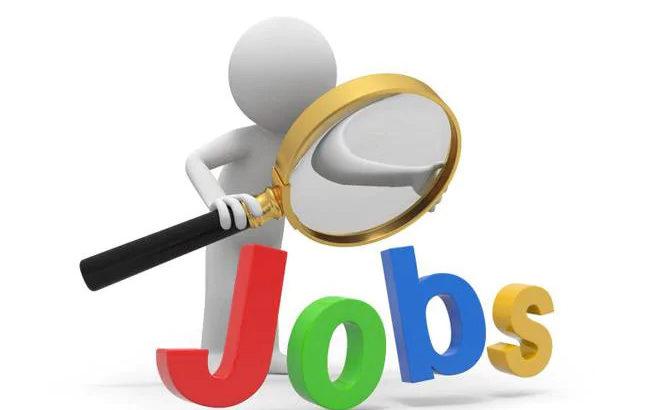 Wanted Computer Operator at Sri Venkateswara & Co