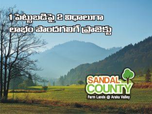 Sandal Wood Plantation Plots for Sale at Aaraku Valley