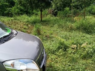 Open Land for Sale at Palangi, Tanuku