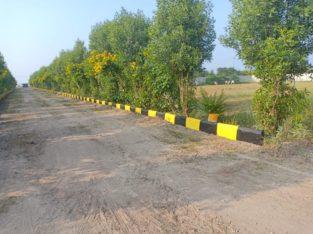 DTCP Plots & Farm Land For Sale Near Yadagirigutta, Rayagiri