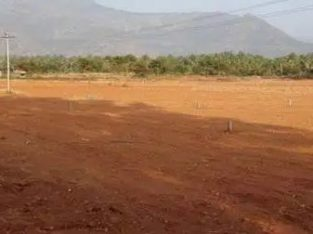 Residential Site For Sale at China Ogirala, Vuyyuru Mandal Krishna District