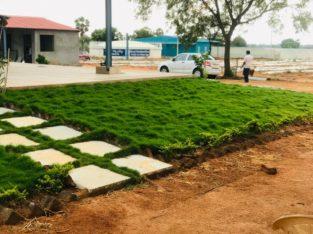 100 + Acres Mega Project Sandalwood Resort & Farm Plots For Sale at Hyderabad.