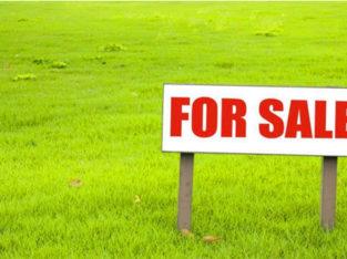 2 Plots for Sale at Velugubanda Village, Rajahmundry
