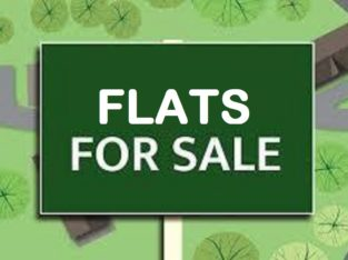4 Flats For Sale at Thurpu Bazar, Gorantla.