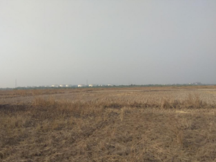Open Commercial Land For Sale Between Naidupeta and Gudur, Nellore Dist.