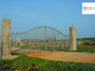 25 Cents Of Farm Land For Sale at NH-565, Kanigiri, Prakasam Dist