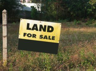 Land For Sale Near BED College, Vinukonda, Guntur Road.