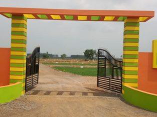 Open Plots For Sale Near Milk Factory, Vijayawada