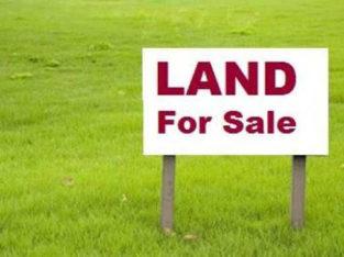 Site For Sale at Gorinta Village, Peddapuram Mandalam.