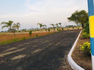 Open Plots for Sale at Rajanagaram, Towards Rajahmundry to Kakinada Highway.