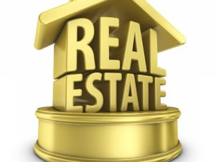 Venu Real Estate & Agency, Ongole
