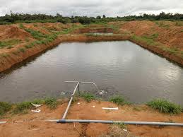 Fish Pond land For Sale at Pallamkuru East Godavari Dist.