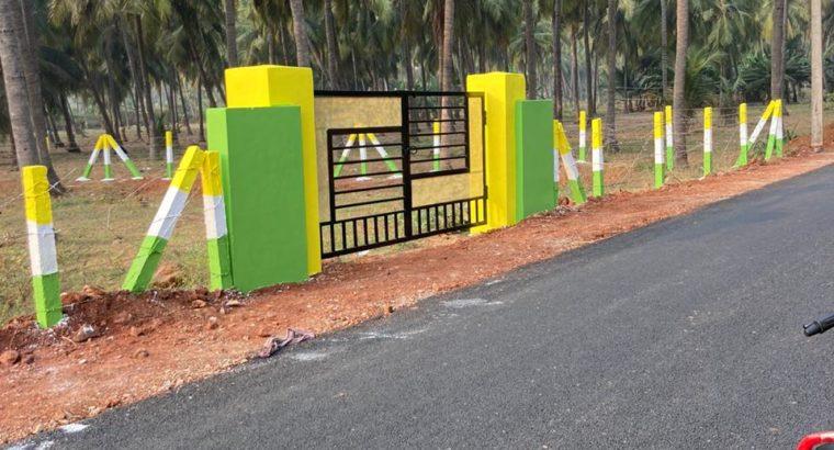 Plots for Sale at Tagarapuvalasa, Visakhapatanam
