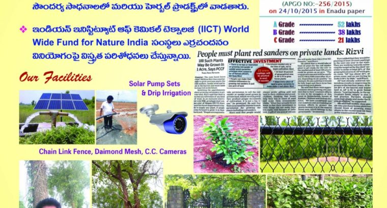 Farm Land Plots for Sale at Kanigiri,Prakasam District