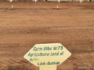 8 Acres Farm Land Plots For Sale at Yadagirigutta,Rayagiri, Hyderabad.