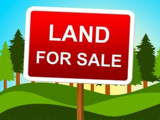 10 Acres Commercial Land For Sale at Karedu Ramp, Ulavapadu Mandal.
