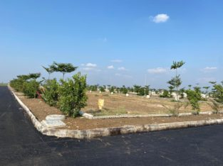 Residential Open Plots for Sale at Kankipadu City, Vijayawada.