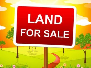Residential / Commercial Land for Sale at Kothapeta, Guntur