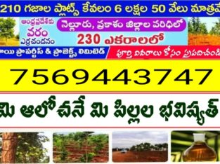 Farm Land For Sale at Nellore & Prakasam Dist.