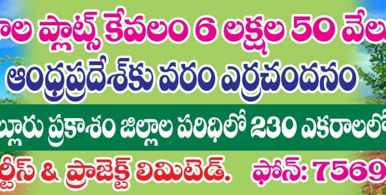 Farm Land For Sale at Nellore & Prakasam Dist.