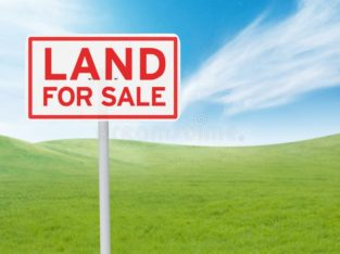 Land For Sale at Achampeta, Kakinada Rural