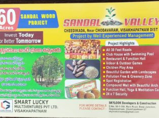 60 Acres Agro Farm Plots Land for Sale near Cheedikada, Visakhapatnam.