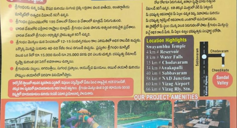 60 Acres Agro Farm Plots Land for Sale near Cheedikada, Visakhapatnam.